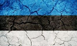 爱沙尼亚标志共和国 免版税图库摄影