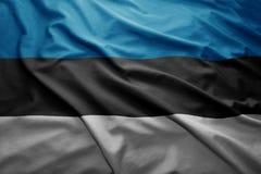 爱沙尼亚标志 免版税库存图片
