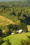 爱沙尼亚森林小山 库存照片