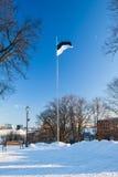 爱沙尼亚的标志 免版税库存图片