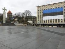 爱沙尼亚的独立天 免版税库存图片