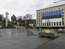 爱沙尼亚的独立天 免版税库存照片