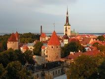 爱沙尼亚老塔林城镇 免版税库存图片