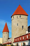 爱沙尼亚老塔林耸立二 免版税库存图片