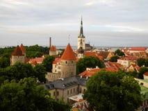 爱沙尼亚老塔林 免版税库存照片