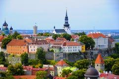 爱沙尼亚老红色顶房顶塔林 库存图片