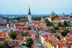 爱沙尼亚老红色顶房顶塔林 免版税图库摄影