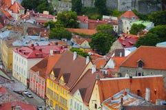 爱沙尼亚老红色顶房顶塔林 库存照片