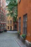 爱沙尼亚老街道塔林城镇 免版税图库摄影