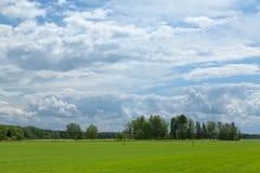 爱沙尼亚语农村风景 免版税图库摄影