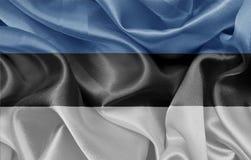 爱沙尼亚语标志 免版税库存图片