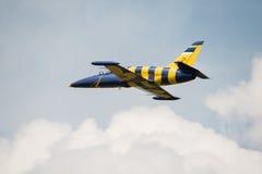 爱沙尼亚语空军航空L-39 Albatros航空器 免版税库存图片