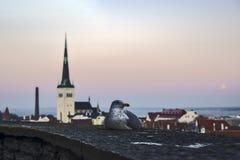 爱沙尼亚 塔林- 2017年1月11日 市的全景塔林 免版税库存图片