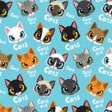 爱猫样式 库存图片