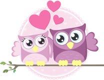 爱猫头鹰夫妇 库存图片