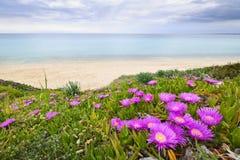 爱琴海海岸希腊海运 库存照片