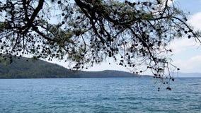 爱琴海的看法 影视素材