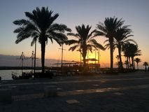 爱琴海黎明第一只节假日海运条纹火鸡 由海的夏天日落 免版税库存照片