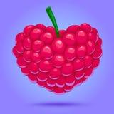 爱用莓 库存图片