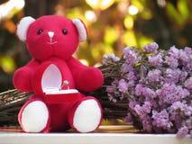 爱的概念在情人节,玩具熊由与花花束的边坐举行有圆环的红色天鹅绒箱子, 库存照片