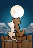爱的猫恋人 向量例证