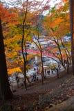 爱知, - 11月23日:人人群红色桥梁的有五颜六色的Aut的 库存照片