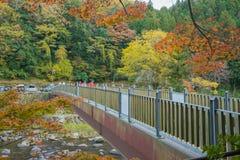 爱知, - 11月23日:美好的风景在Korankei的秋天, N的 库存图片