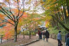 爱知, - 11月23日:美好的风景在Korankei的秋天, N的 免版税库存图片