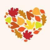 爱秋天的标志以心脏的形式 免版税库存图片