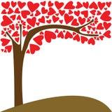 爱结构树  免版税库存图片