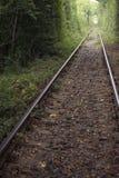 爱罗马尼亚隧道  免版税库存照片