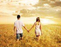 爱走在日落领域的夫妇握手 免版税库存照片