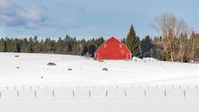 爱达荷农场的明亮的红色谷仓在与雪的冬天在grou 图库摄影