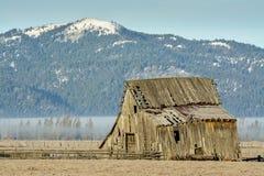 爱达荷山和一个土气谷仓在国家 免版税库存照片