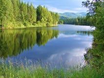 爱达荷湖反射 免版税库存照片