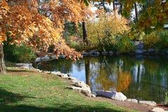 爱达荷的秋天颜色 库存照片