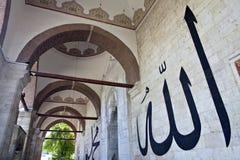爱迪尔内清真寺老火鸡 库存图片
