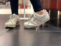 爱迪达超级明星鞋子 库存照片