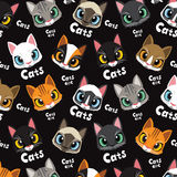 爱逗人喜爱的猫样式 免版税库存照片