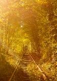 爱隧道-被围拢的铁路隧道  免版税库存图片