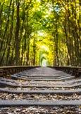 爱隧道-被围拢的铁路隧道  免版税图库摄影