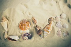 爱题字由壳做成在白色沙子 概念亲吻妇女的爱人 库存图片