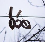 爱题字被雕刻入干燥叶子和晒衣夹附有绳索 库存照片