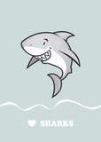爱鲨鱼 免版税库存图片
