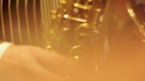 爵士乐、金子和一个可爱的晚上在俱乐部 股票视频