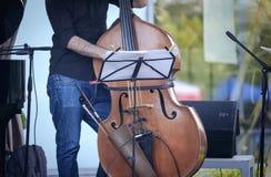 爵士乐音乐家演奏低音提琴2 库存图片
