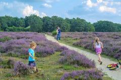 父亲、母亲和他们的两个小孩子在停泊走在一美好的天与许多的晚夏阳光和蓝色分类 库存照片