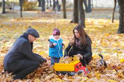 父亲、母亲和他的小儿子在秋天庭院里休息 使用与玩具汽车的逗人喜爱的男孩在秋天公园 免版税图库摄影