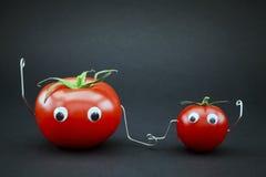 父亲儿子蕃茄 免版税库存照片