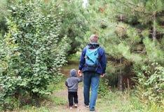 父亲和儿子步行在杉木中的具球果森林里 家庭价值观的概念,远足 库存照片
